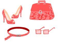 Free Pink Fashion Set Stock Photos - 21801693