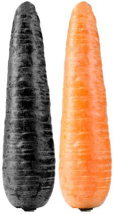 Contaminated And Organic Carrots Royalty Free Stock Image