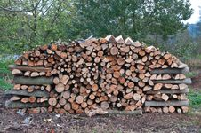 Wood For The Winter Royalty Free Stock Image