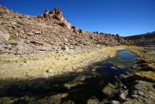 Oasis In The Atacama Desert Royalty Free Stock Images