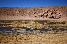 River Flow In The Atacama Desert Stock Photo