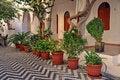 Free Mediterranean Courtyard Royalty Free Stock Image - 21839076
