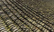 Free Tile Stock Photo - 21834900
