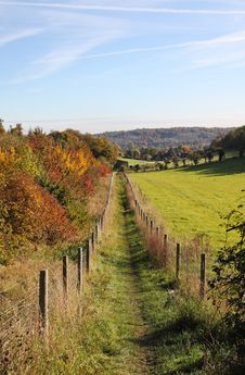 Autumn Landscape With Track Between Trees Royalty Free Stock Image