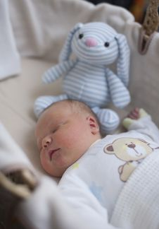 Free Newborn Baby Boy Asleep With Cuddly Toy Royalty Free Stock Photo - 21840505