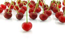 Free Cherries On White Background Royalty Free Stock Photos - 21846698