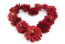 Free Red Flowers In A Shape Of A Heart Royalty Free Stock Photos - 21848648