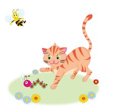 A Cat And Insects Stock Photography