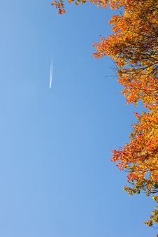 Free Jet Stream Above Autumn Colors Stock Photos - 21864083