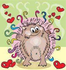 Free Cute Hedgehog Stock Photo - 21864320