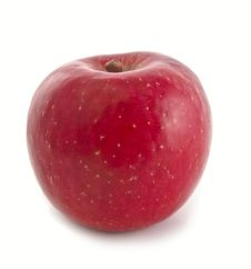 Free Apple Stock Photo - 21866710