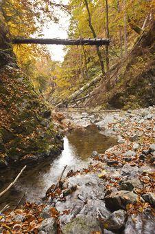 Free Landscape Autumn Stock Photos - 21875793
