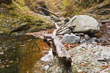 Free Landscape Autumn Stock Image - 21875811