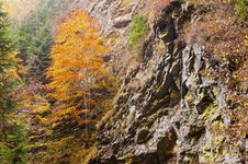 Free Autumn Waterfall In Mountain Royalty Free Stock Image - 21875816