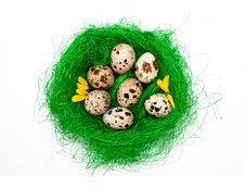 Free Quail Eggs Royalty Free Stock Photos - 21877408