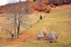 Free Hay Cock Stock Image - 21881931