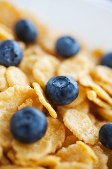 Free Corn Flakes With Fresh Bilberry Royalty Free Stock Images - 21881949