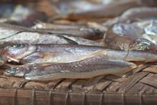 Free Dried Fish Stock Photography - 21883472