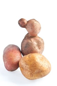 Free Forms Of Potatoes Royalty Free Stock Photography - 21884537