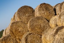 Free Hay Rolls Royalty Free Stock Photo - 21886065