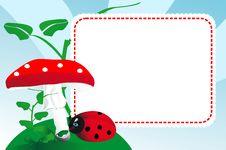 Free Ladybug And Mushroom Stock Image - 21886391