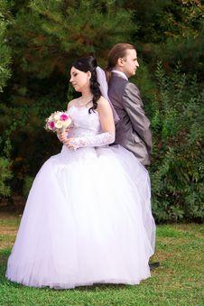 Free Happy Bride And Groom Stock Photos - 21892973