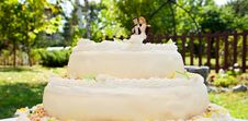 Free Wedding Cake Royalty Free Stock Images - 21899289