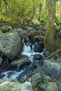 Free Woodland Falls Stock Photography - 2193852