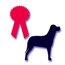 Free Dog Award Royalty Free Stock Image - 2191446