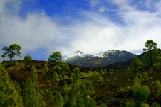 Free Snow Cap Teide Stock Photography - 2191862