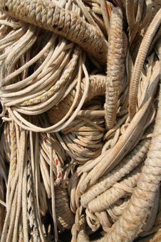 Free Entangled Ropes Royalty Free Stock Images - 2198399