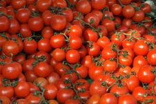 Free Sunny Tomatoes Background Royalty Free Stock Photography - 2199697