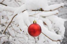 Free Christmas Ball On The Snow Stock Photo - 21910330