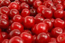 Free Cherries Stock Images - 21910444