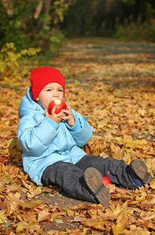 Free Little Boy Sitting On The Autumn Leaves Royalty Free Stock Image - 21910946