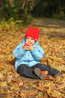 Free Little Boy Sitting On The Autumn Leaves Stock Photos - 21910963