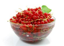 Free Isolated Red Currant Stock Image - 21911471