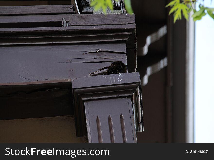 Broken wood railing of porch, birds nest adventure