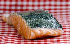 Free Salmon Stock Image - 21928651