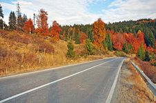 Free Autumnal Road Traffic Stock Photo - 21937520