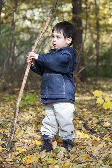 Free Child In Forest Stock Photography - 21943312