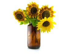 Free Bouquet Of Sunflowers In Vase Royalty Free Stock Images - 21946339