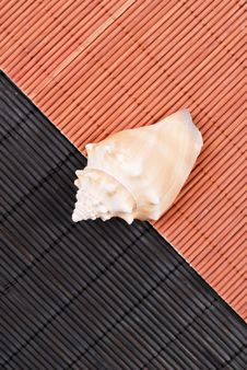 Free Down By The Sea Stock Image - 21946801