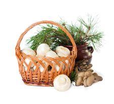 Free Basket Of  Mushrooms Royalty Free Stock Photography - 21957837