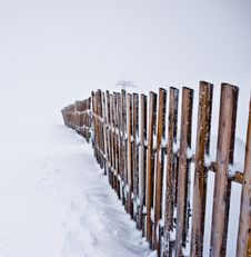 Free Frozen Fence Stock Images - 21962154