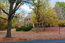 Free Autumn Foliage On A Street Royalty Free Stock Photos - 21964328