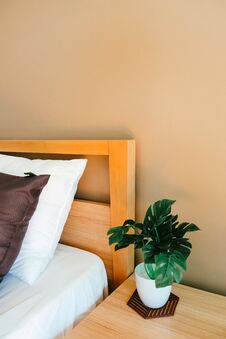 Artificial Plant Decoration In Bedroom Royalty Free Stock Photography