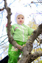 Free Small Girl On Tree By Autumn Royalty Free Stock Photos - 21984848