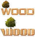 Free Two Words Wood In Wood Carving With Tree Royalty Free Stock Photo - 21986875