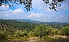 Free Magnificent Panorama Of Villanueva De Algaidas Stock Photography - 21980522